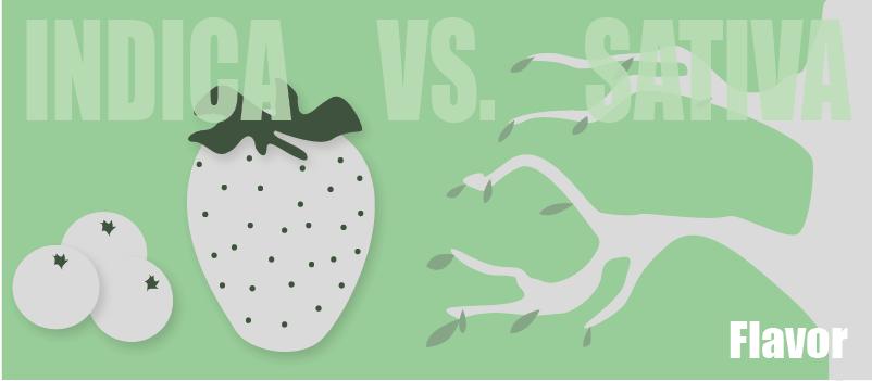 sativa flavor vs indica flavor
