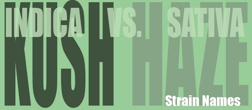 indica strain names sativa strain names