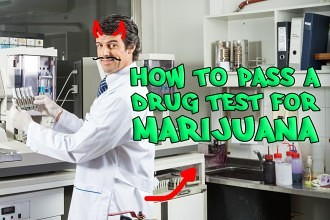 Cannabis testing companies ipo