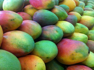 do mangoes intensify your high header